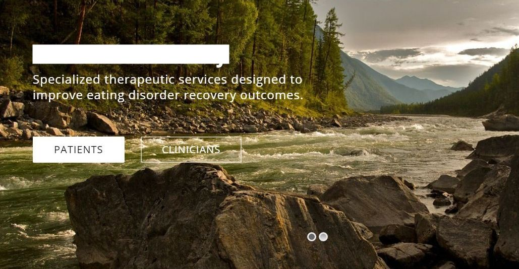 Online Patient Therapy
